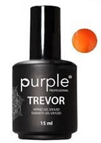 Picture of Purple Verniz Gel Trevor 15ml
